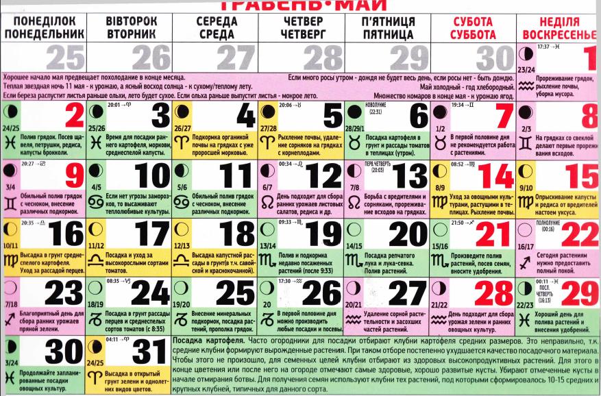 Лунный календарь посадки огурцов